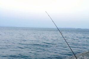 福浦岸壁 釣り