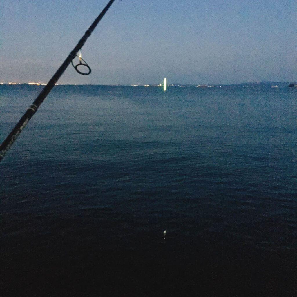 横須賀でタチウオ釣り