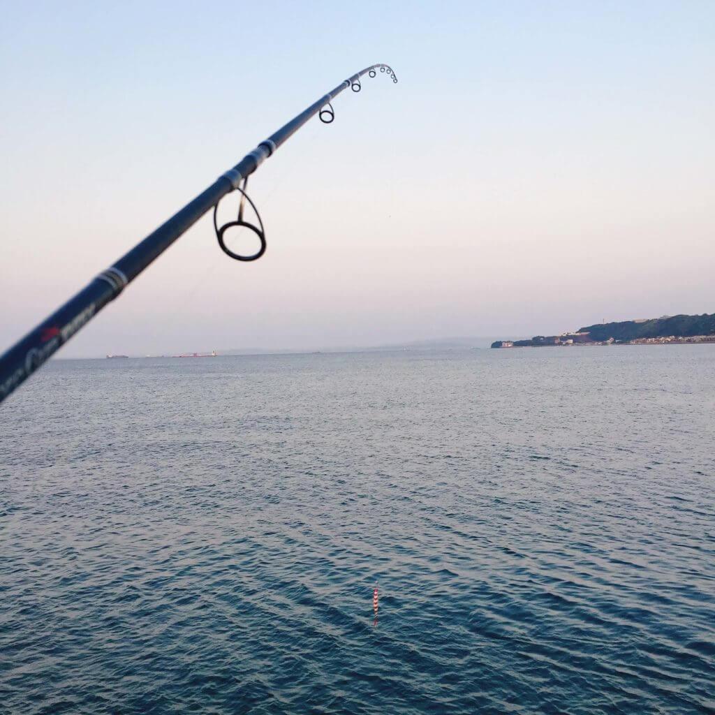 横須賀で釣り