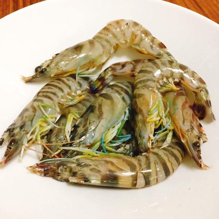 マゴチ釣りの餌 サイマキ