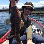 金沢八景で釣れたマゴチ