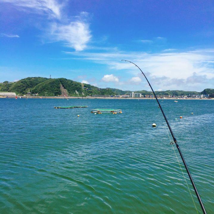 逗子・葉山でシロギス釣り
