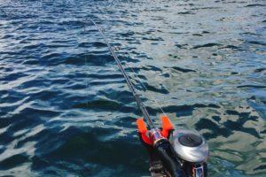 金沢八景でマゴチ泳がせ釣り