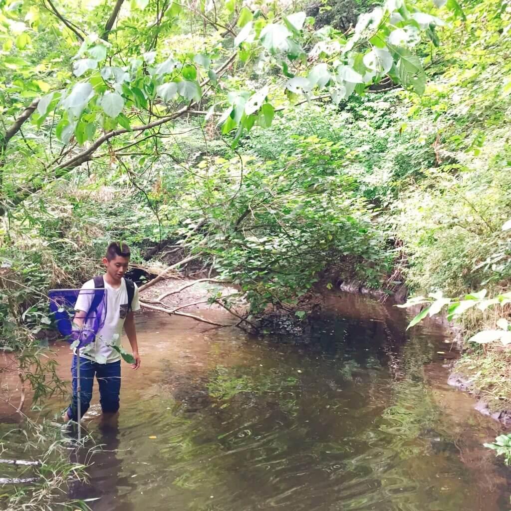 三浦半島の河川をさかのぼる