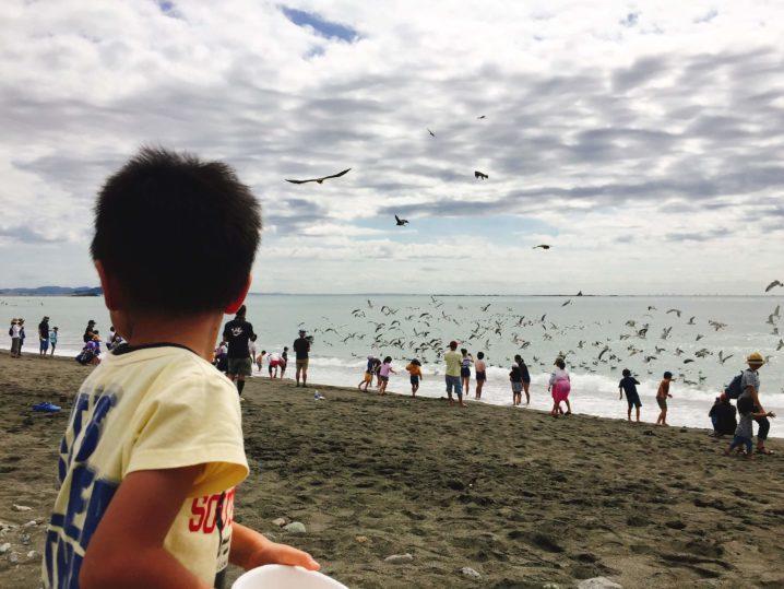 湘南の海と子供とカモメ