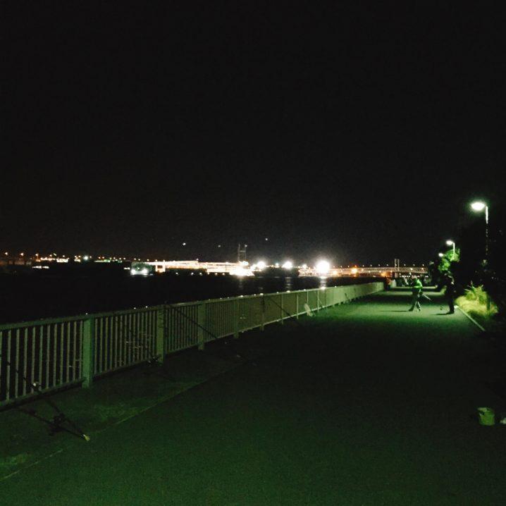 ふれーゆ裏で夜釣り