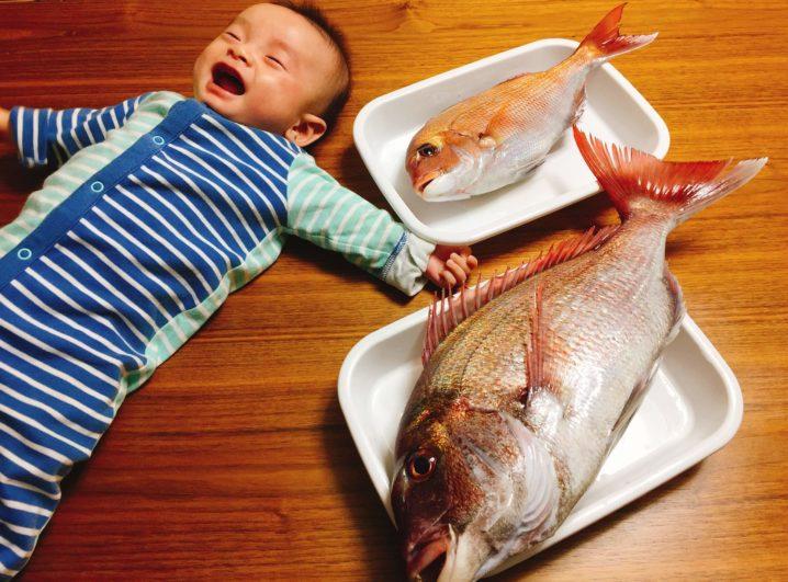 子供とお食い初めの真鯛