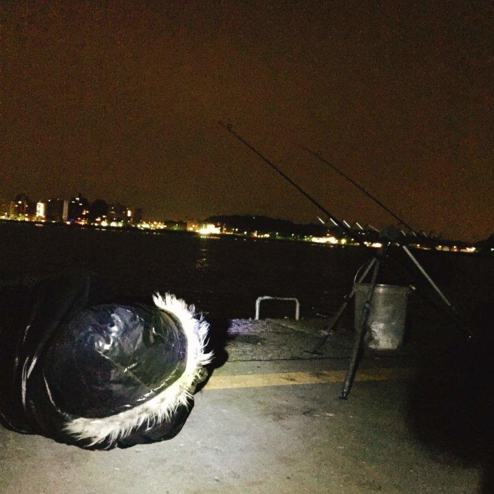 江ノ島でぶっこみ釣り