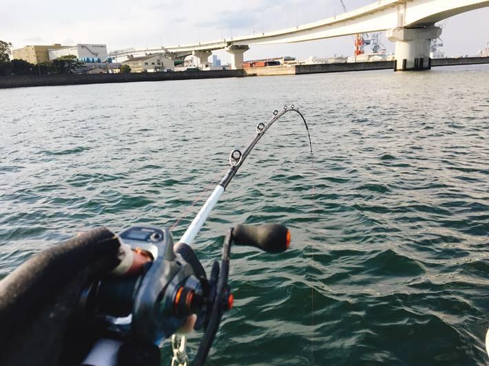 横浜本牧で黄アジ釣り