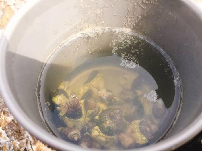 カメノテのスープ
