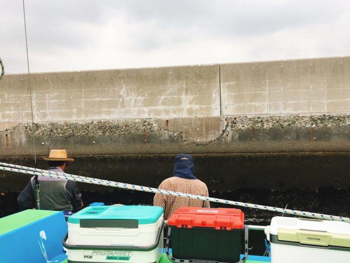 岸壁際を釣るタコ釣り