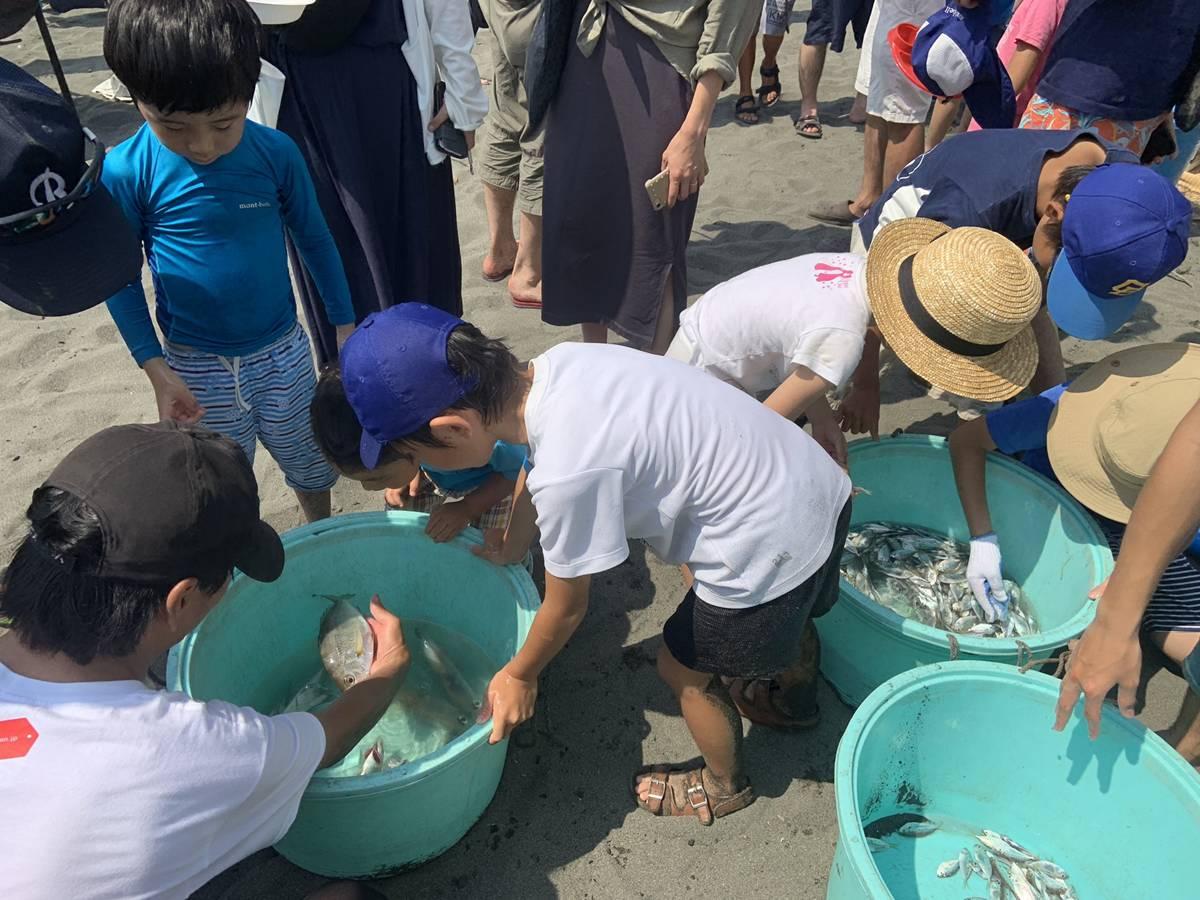 ORETSURI地引網の漁獲