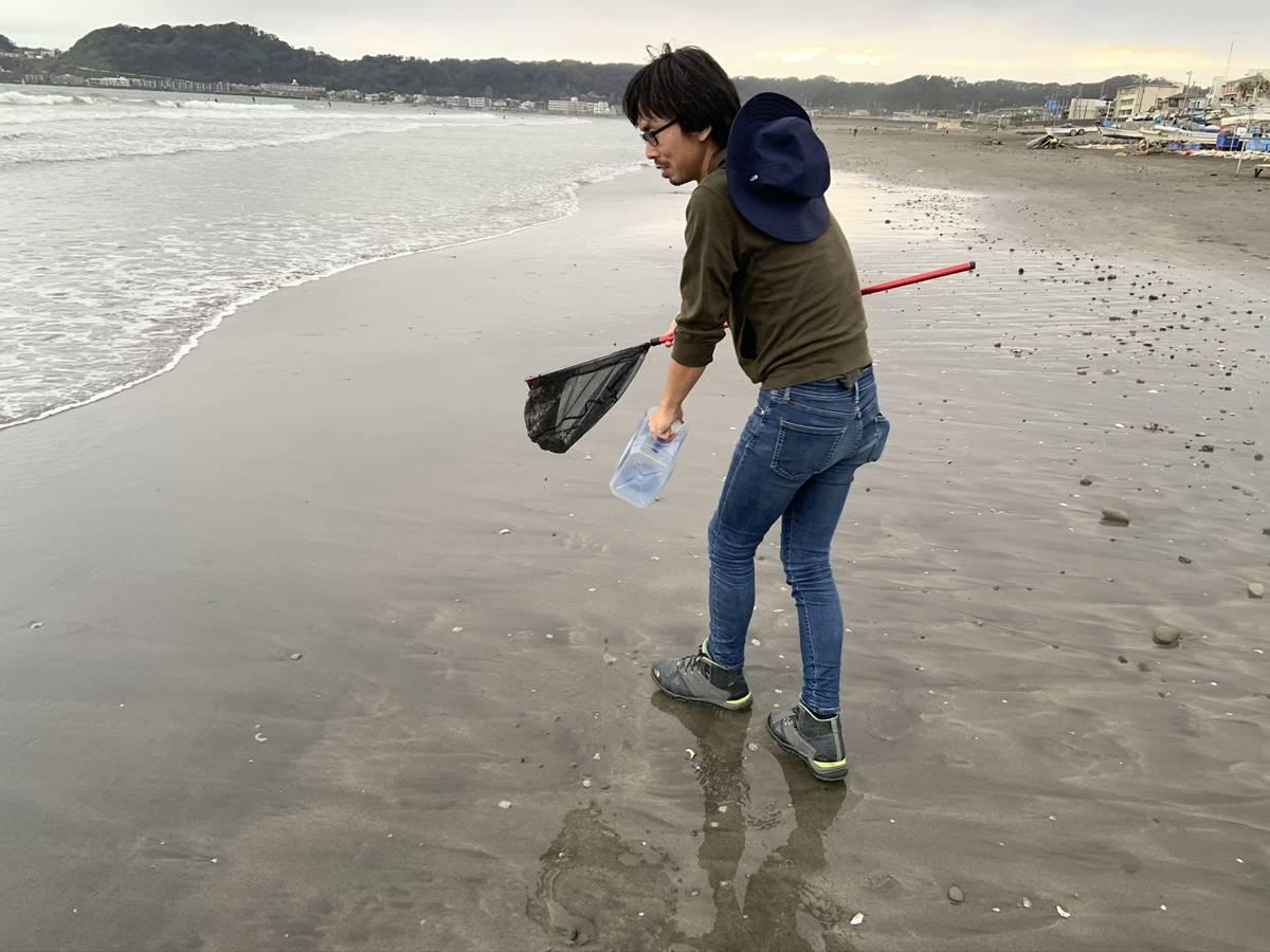 の 砂 も 海 ころ