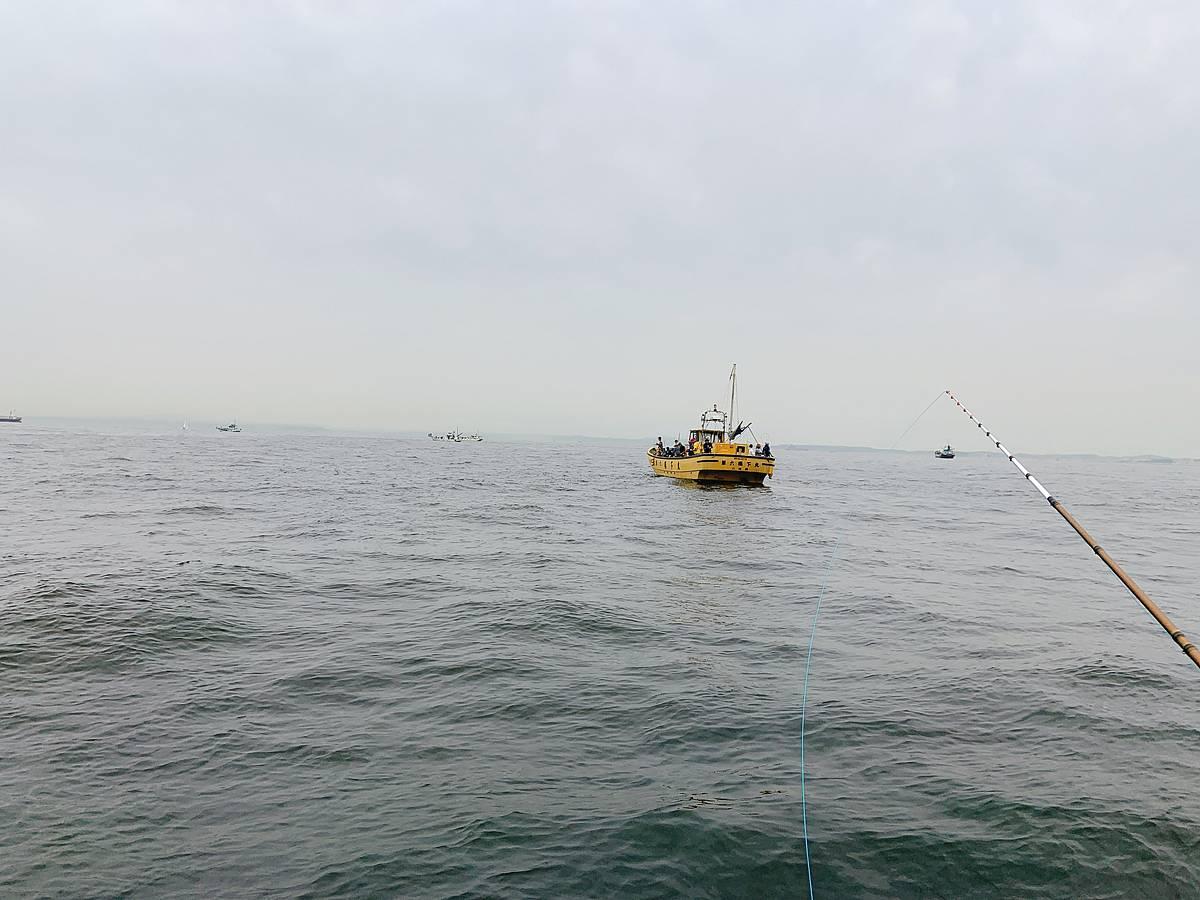 幸浦沖でタコ釣り