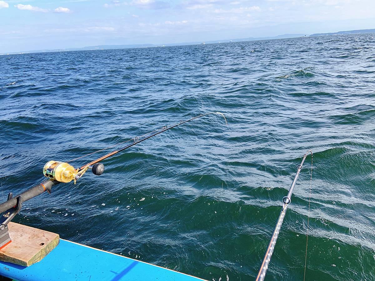 マゴチの釣りの二本竿